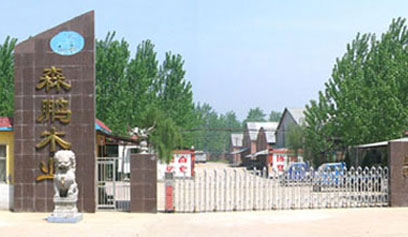 永特耐木工胶生产厂家,征服山东森鹏的理由很简单